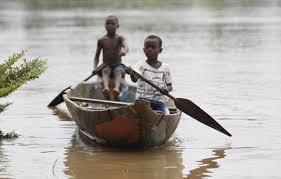 River niger 1